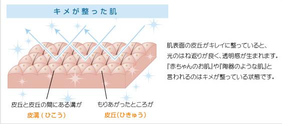 SnapCrab_NoName_2014-5-21_12-6-17_No-00