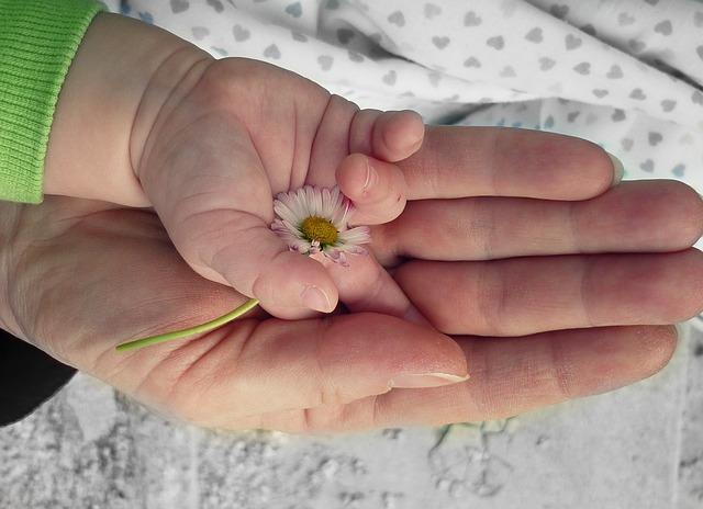 hands-105455_640 (1)